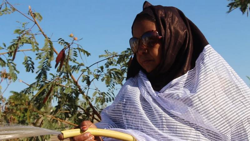"""""""ابيتيله"""" امرأة موريتانية تركت المدينة واختارت الصحراء رغم قساوتها"""