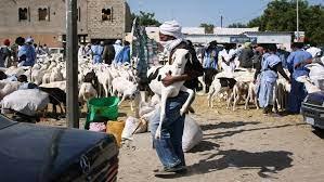 ضبط عصابة بسوق المواشي تبيع أغنام بأسعار زهيدة